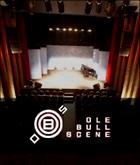 Ole Bull Scene