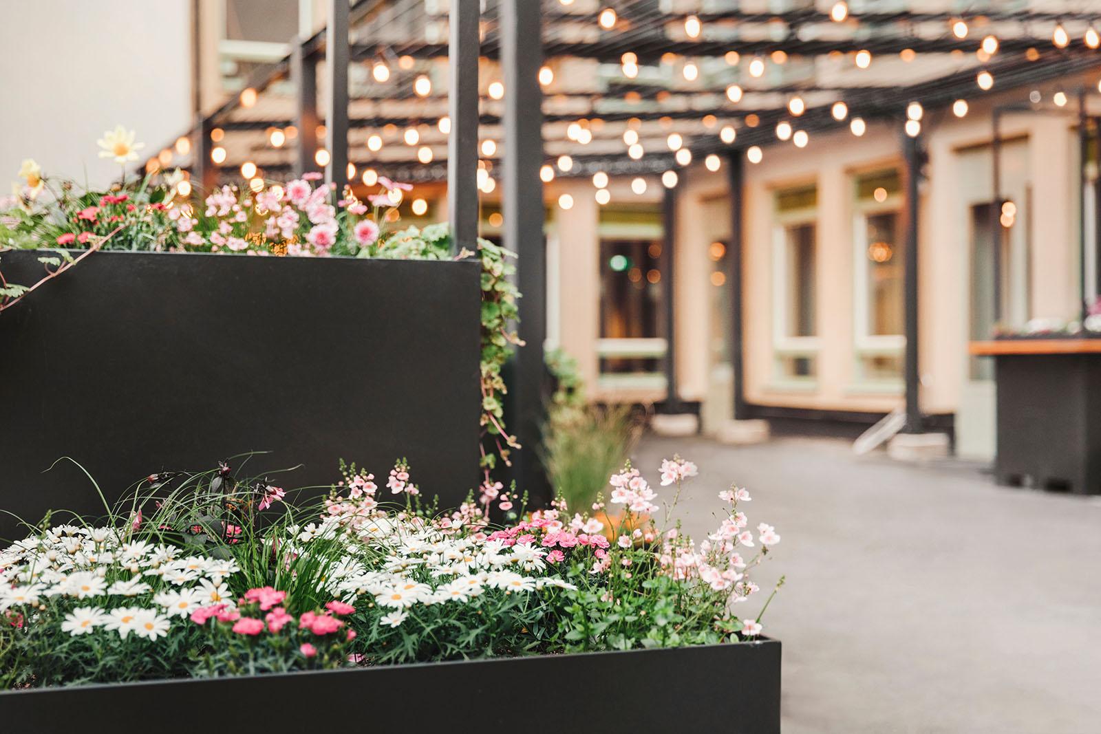 Vi tillhandahåller högkvalitativa lösningar och tjänster inom ljusdesign i Stockholm, som här: ett väl utfört uppdrag på innegården av Blique by Nobis, Stockholm.