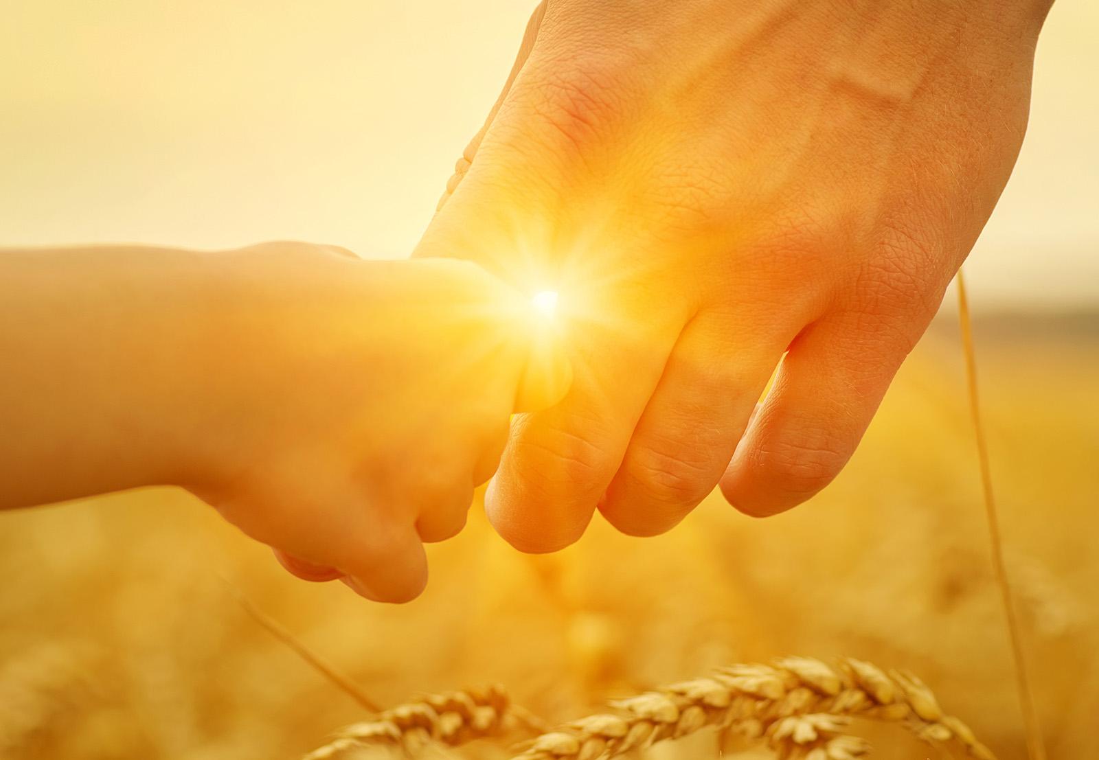 Solceller Tranås. Barn och vuxen håller hand i solsken.