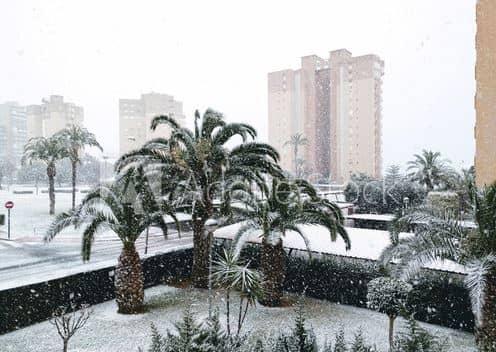 vinter väder i Alicante