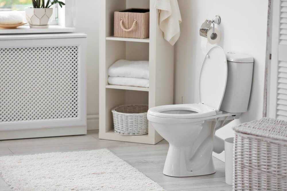 toalett i badrum