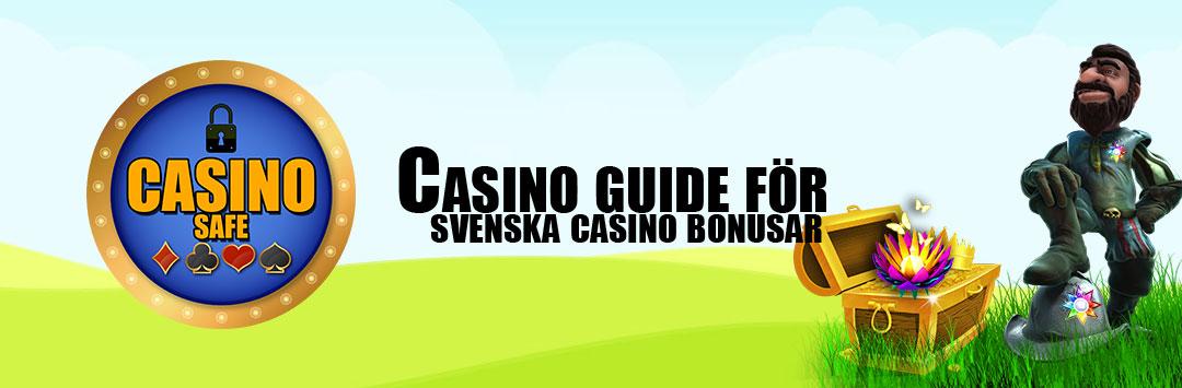 Casino Safe
