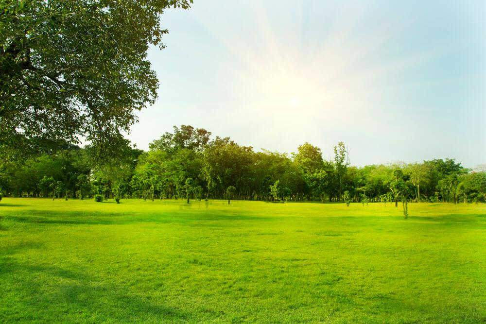 PPAM erbjuder solceller