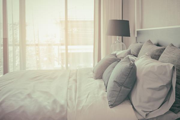 Silverfisk i sängen/sovrummet vill man helst slippa