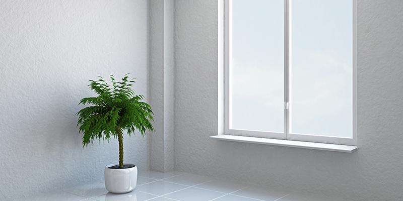 Ett insynsskyddat fönster