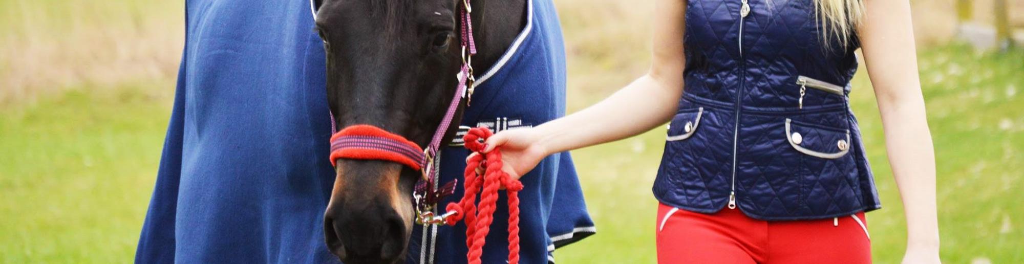 Hästfoder i Skåne