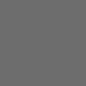 R-licens. En etisk kvalitetsmärkning som identifierar företag som står för ett etiskt förhållningssätt.