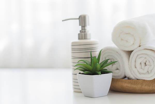 handfat med tvål, tvättlapparsamt liten krukväxt