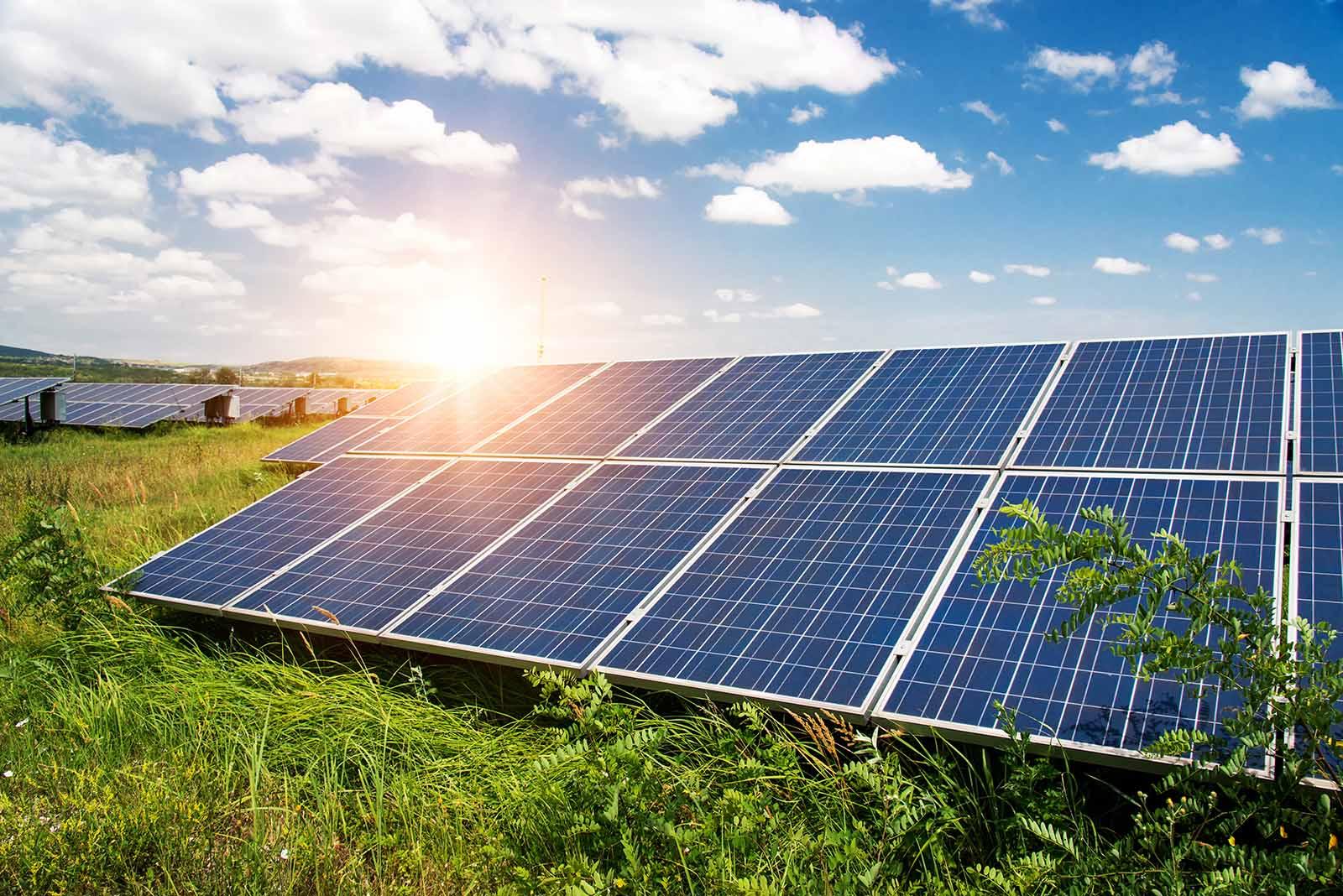 Vi installerar solceller i Kungsbacka! Här en bild på solpaneler en grönskande sommardag.