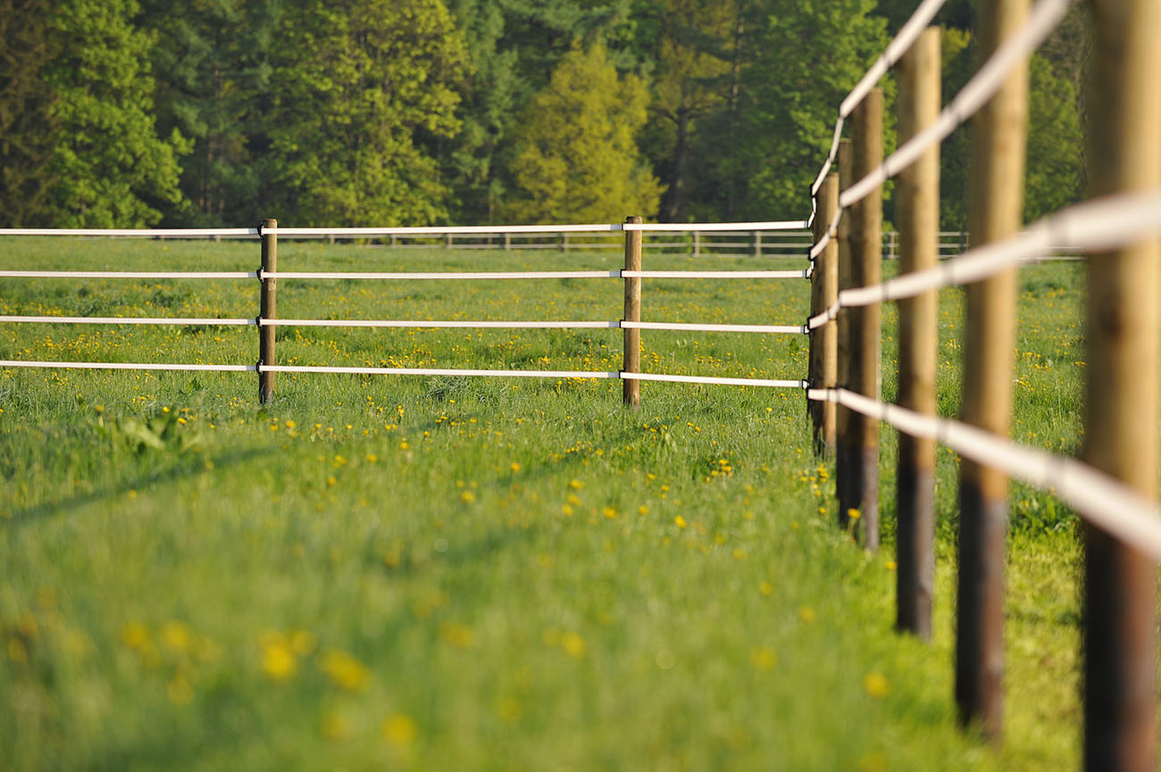 Våra stängsel i Blekinge är av bästa kvalitet. Vi tror på hållbarhet med våra stängsel i Blekinge.