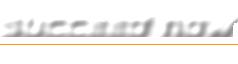 Succeednow logo