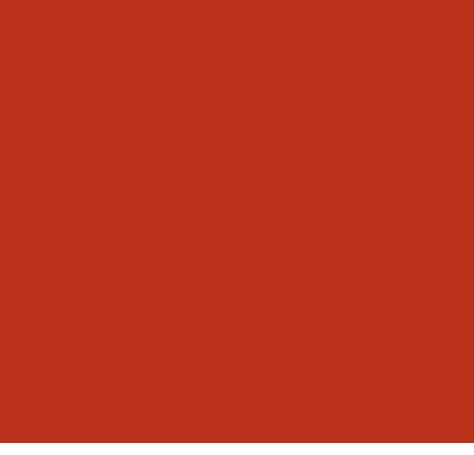 Vi som arbetar som takläggare i Borås är King of Roofs