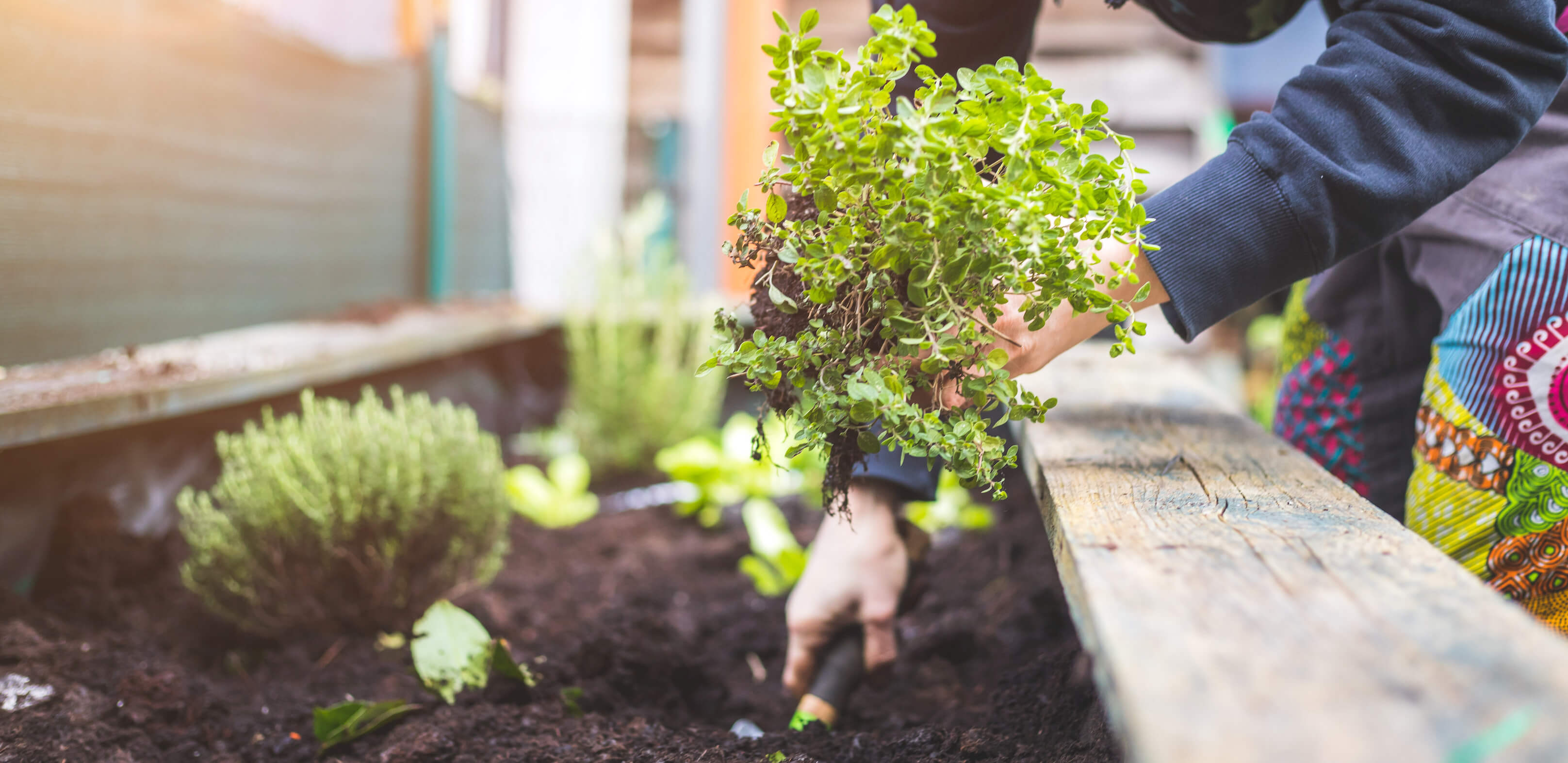 Vi är din trädgårdsanläggare i Helsingborg