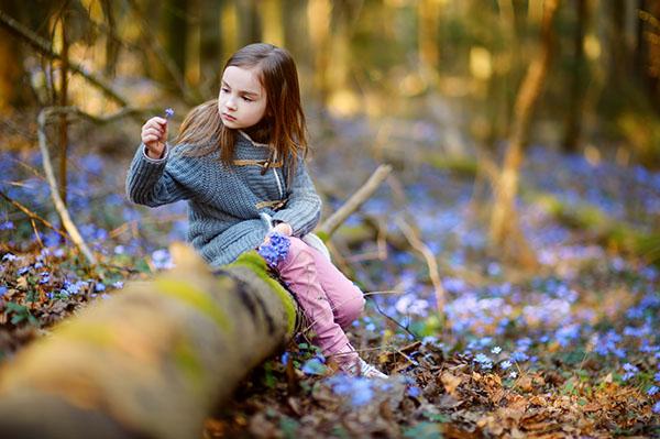 barn som plockar blommor