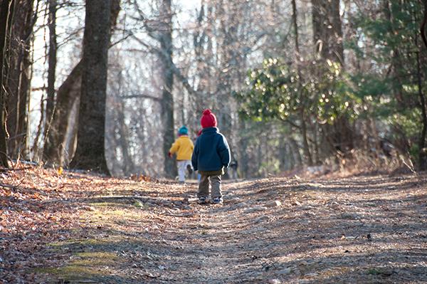 barn i skogen ensam vårdnad