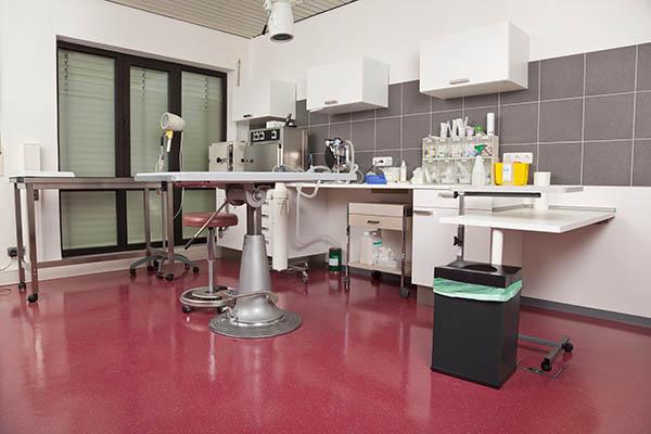 operationssal veterinärer Stockholm