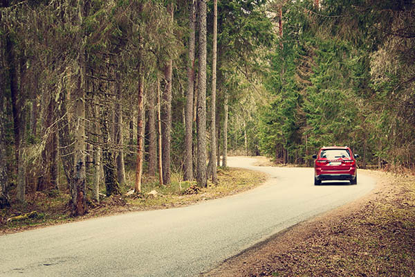 bil i jämtländsk skog