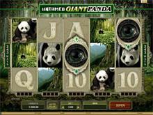 Untamed Giant Panda Video Slot
