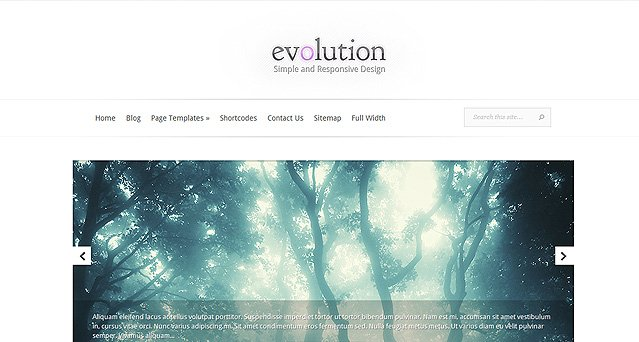 Evolution wordpress tema städfirma